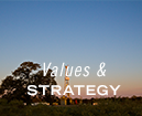 img-column-about-us-values-and-strategy